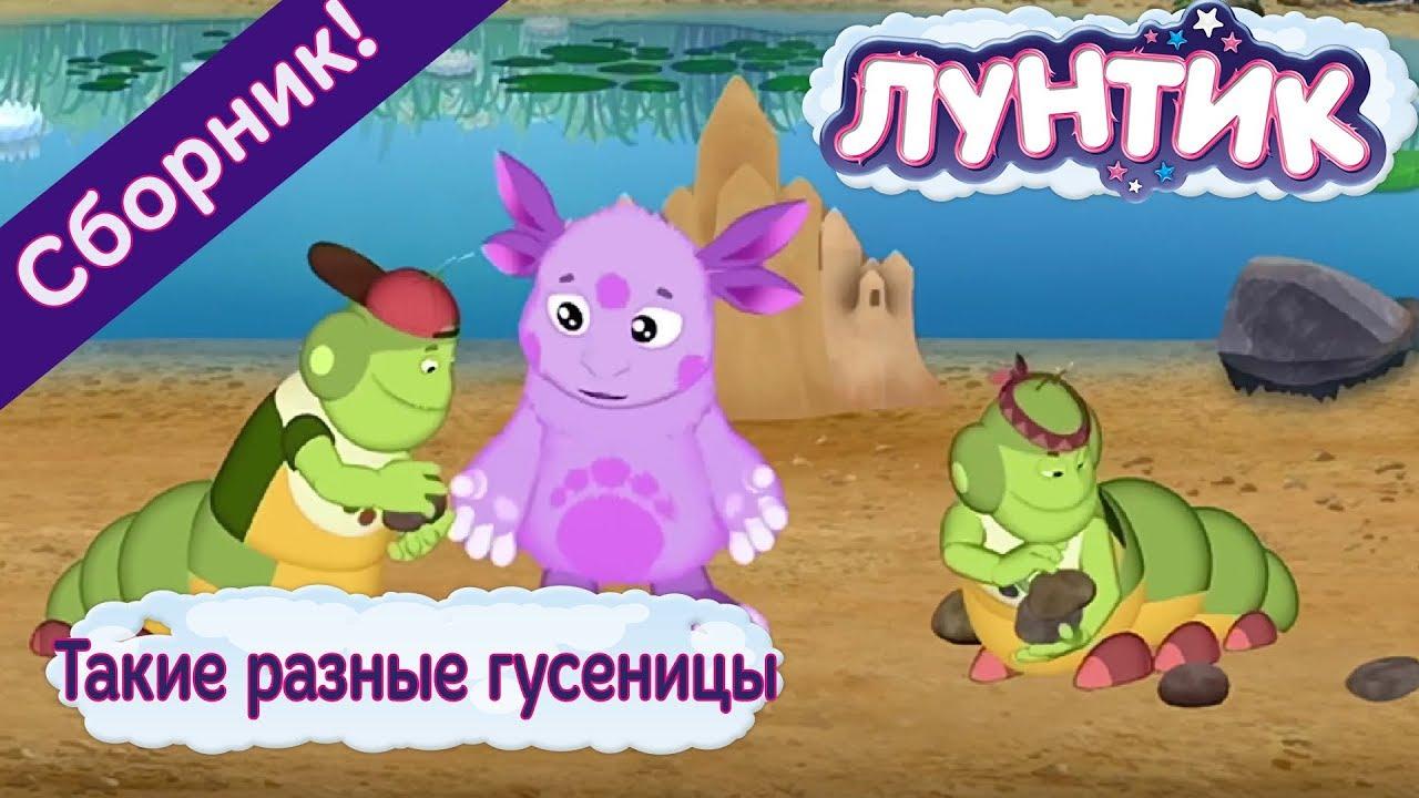 Фердинанд мультфильм смотреть онлайн в хорошем